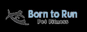 born to run fitness logo